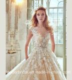 Шампань Bridal мантии Tulle шнурка платье 2017 венчания R201708