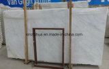 Grande lastra di marmo bianca orientale per le mattonelle o il controsoffitto