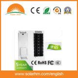 (HM-12100A) 12V100W mono comitati LED tutto in un indicatore luminoso di via solare