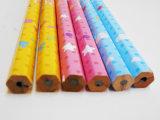Le crayon de révolution a plongé le crayon Hex d'HB de crayon de crayon