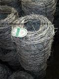중국 직업적인 제작자 가시철사 보호 담