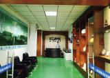 H1 50W 3800lm 6000k 자동 LED DC12-24V 백색 Light