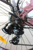 """26 """"アルミ合金フレームのShimano 7の速度ギヤ250W Eバイク(JSL038G-4)"""