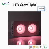 Energiesparende 2*200W LED wachsen mit patentiertem COB+ Reflektor-Entwurf hell