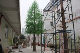 숲 다방 상점을%s 인공적인 말쑥한 나무