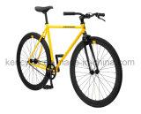 こんにちは抗張鋼鉄単一の速度の苦境ギヤバイクSy-Fx70005