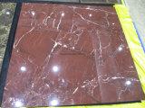 Azulejo lleno natural del mármol de la carrocería para la pavimentación del suelo