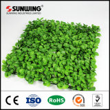 Low Cost Earth Friendly Artificial Box Hedge Panels para porta da frente