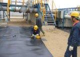 Associação do biogás do biogás Plant/HDPE da membrana do HDPE
