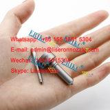 L216pbc Öl-Einspritzpumpe-Einspritzdüse-Düse L216pbd Alla148FL216 für Bebe4d08001 Bebe4d24002 Bebe4d16001