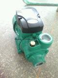 0.37kw 0.5HP 새로운 모양 인도 Qb60에 있는 전기 수도 펌프 모터 가격