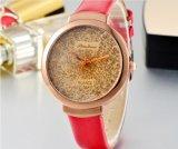 소녀의 Watchlady 시계 여자 보석 결박 물 저항하는 상표 시계