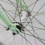 2017 велосипед города девушки скорости задего 7 высокого качества (CTB6)