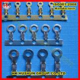 Qualität Soem-Ring-Terminal/Ring-Terminal (HS-DZ-0056)