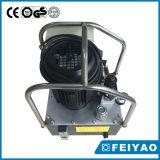 Pompe électrique hydraulique temporaire de marque de Feiyao double (FY-ER)