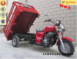 Sale를 위한 300cc Gasoline 3 Wheel Cargo Motorcycle