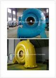 Mini gerador de turbina de Francis hidro (água)