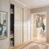 Feuille décorative de plastique de PVC de fibre de bois de porte