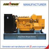 1000kw biogas Generaor met Ce- Certificaat 50Hz