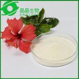 Magnolia Officinalis Rehd. Et poudre 80% d'extrait de Magnolol d'extrait de Wils