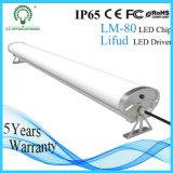 IP65 alta luz de la Tri-Prueba 60W LED del lumen 1500m m con el programa piloto de Lifud