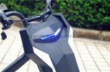 Motorino elettrico approvato 120W del Ce per il regalo di natale dei capretti