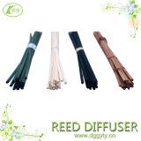 10 années Factory Direct Taille de vente personnalisée rotin Diffuseur Reeds