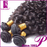 100人間Hair Weave Brands、Lace ClosureのVirgin Hair Bundles