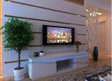 Hölzerner Fernsehapparat-Schrank-moderne Hauptwohnzimmer LED Fernsehapparat-Möbel (BR-TV963)