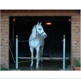 Calefator infravermelho da preparação do animal/animal de estimação para o cavalo equestre