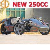 SaleのためのQuanlity前兆をしめされたAssured New EEC 250cc Ztr Trike Roadster