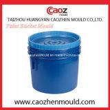 Vente chaude/moulage en plastique de position de peinture d'injection