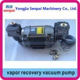 Pompe de vide mate de pompe de reprise de vapeur des Double-Têtes 220V/380V