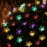 De waterdichte Zonne LEIDENE van de Bloem van de Werf van Kerstmis Decoratieve Lichten van Kerstmis