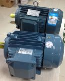 Copper Wire High Efficiency Electric Motor (IE2 IE3 IE1)