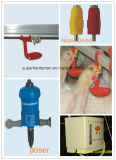 Plein Set Automatic Highquality Poultry Equipment pour Broiler