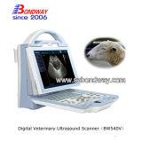 Nuevo producto de escáner de ultrasonido Doppler