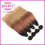 Les cheveux malaisiens de Vierge d'Omber empaquettent la prolongation malaisienne bon marché de cheveux de tonalité des cheveux humains trois