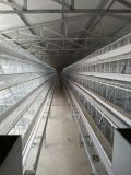 Las aves de corral prefabricadas contienen con el equipo Breeding de la jaula de las aves de corral del conjunto completo