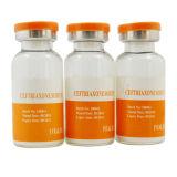 Injection 1g/15ml, GMP Medicine를 위한 Ceftriaxone Sodium
