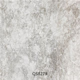 Porzellan Ceramic Stone Antique Interior Floor Tiles (600X600mm)
