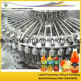 Heiße Fülle-Fruchtsaft-Maschine