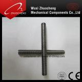Amorçage Rod DIN975 DIN976 d'acier inoxydable