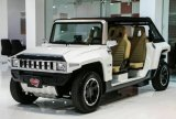 E-Automobile di lusso di nuovo disegno 2016 per ottenere le ragazze