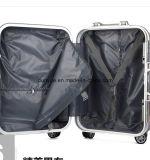 Heißer Verkaufs-Aktien ABS und PC bilden materieller harter Deckel-Gepäck-Kasten, Zoll hellen Laufkatze-Beutel