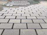 De natuurlijke Grijze Tegels van het Graniet/besnoeiing-aan-Grootte voor de Projecten van de Bouw
