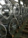 Bobines plongées chaudes en acier d'acier de Galvalume d'Aluzinc d'Anti-Doigt (GI, GL)