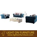 Mobília moderna do sofá da tela para o projeto da mobília do hotel (F835)