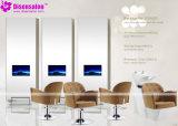 普及した高品質の大広間の家具のシャンプーの理髪師の大広間の椅子(P2042C)