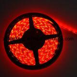 tira flexible blanca de la luz del día SMD5050 4000k de 12V-24V los 60LEDs/M LED
